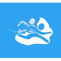 logo_kermisloop_201x201px
